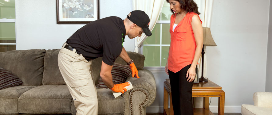 Ontario, CA carpet upholstery cleaning